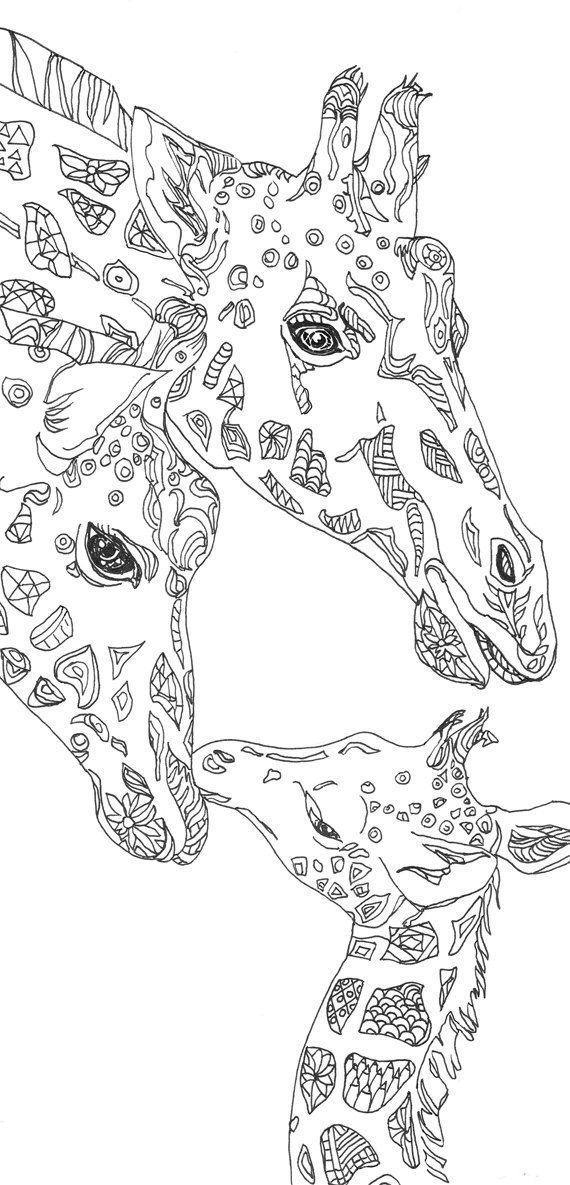 Coloring pages Giraffe Printable Adult Coloring book Clip.