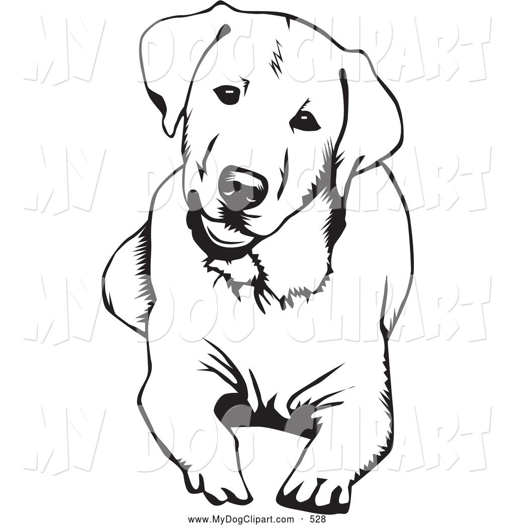 1252 Labrador free clipart.