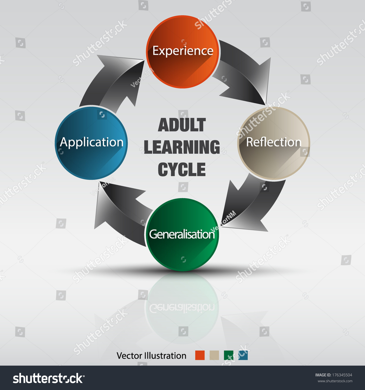 Adult Learning Cycle Vector Illustration Stock Vector (Royalty Free.