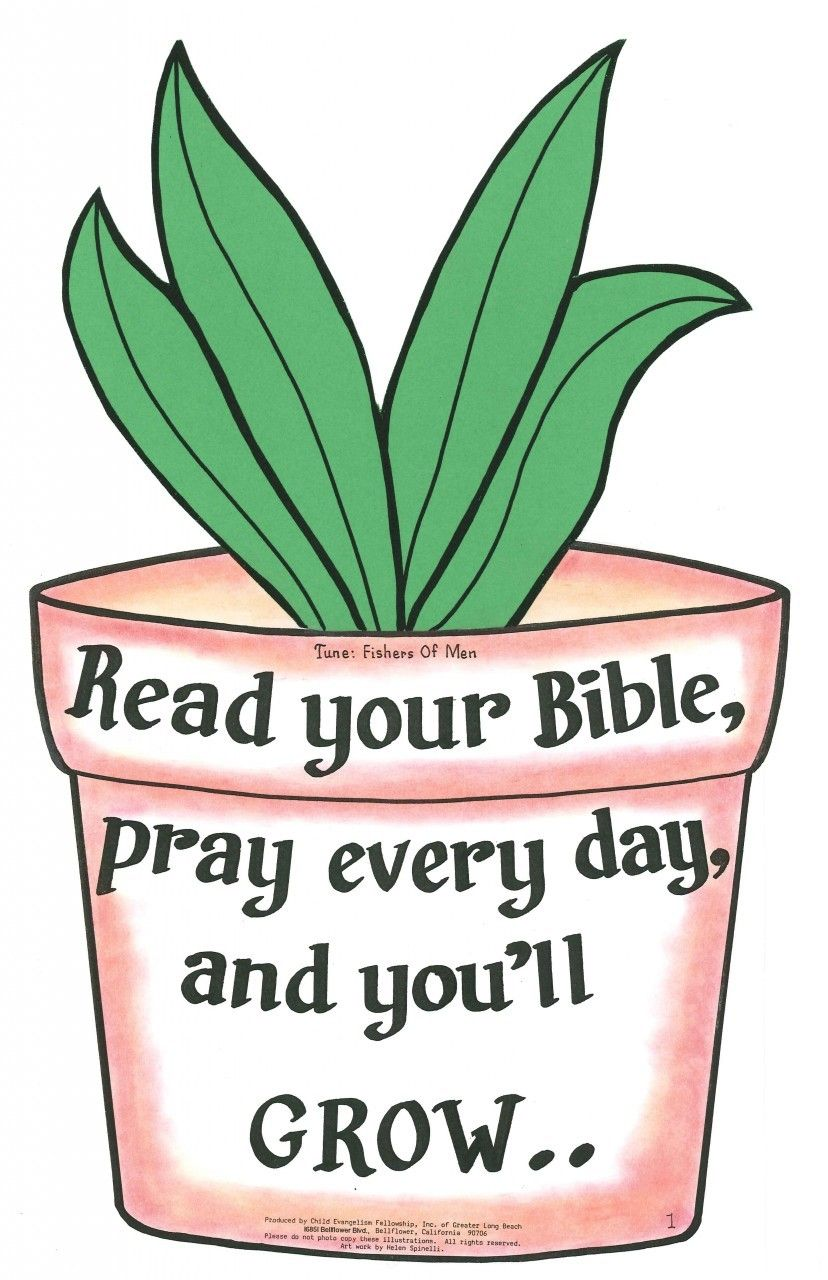 Read Your Bible.