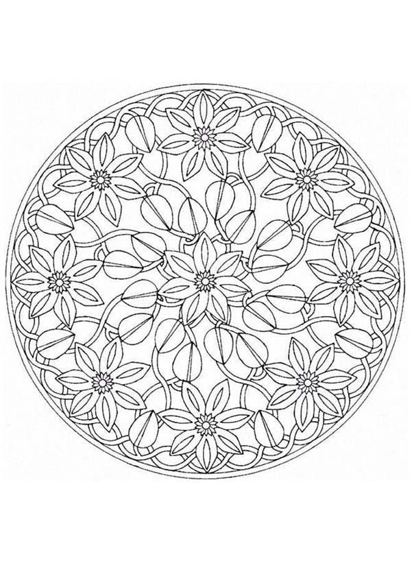 55 Best images about mandalas on Pinterest.