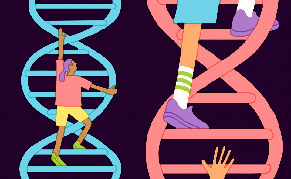 DNA tests for IQ are coming, but it might not be smart to.