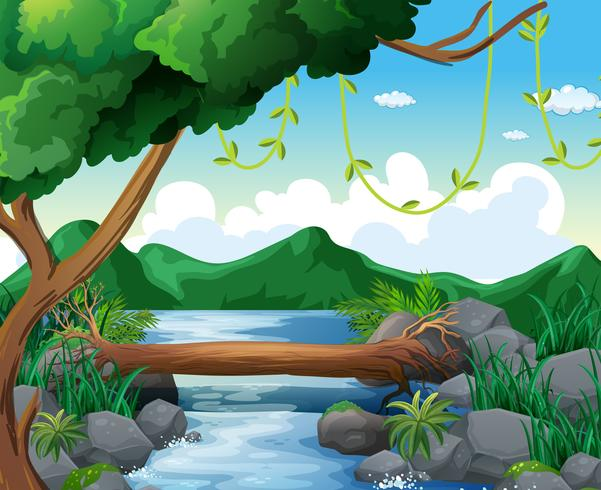 Background scene with river in forest.