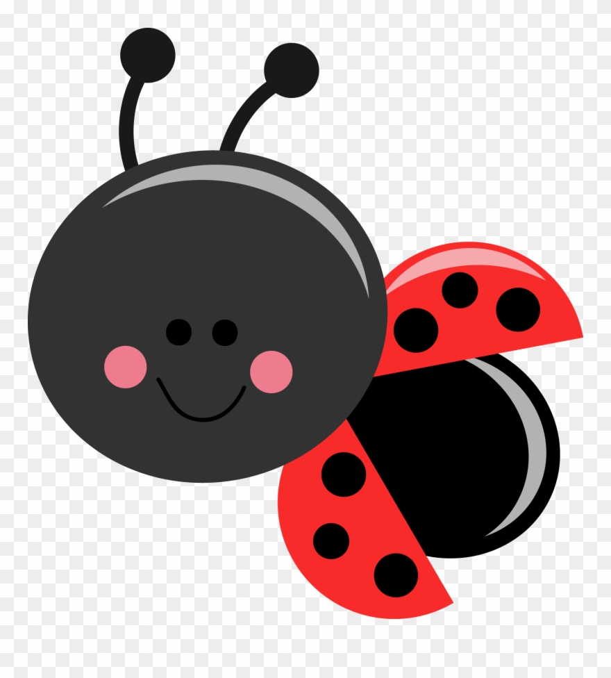 Beetle Ladybug Free Collection Download And Share.