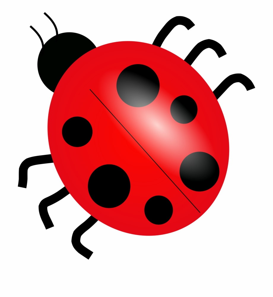 Download Lady Bugs Png.