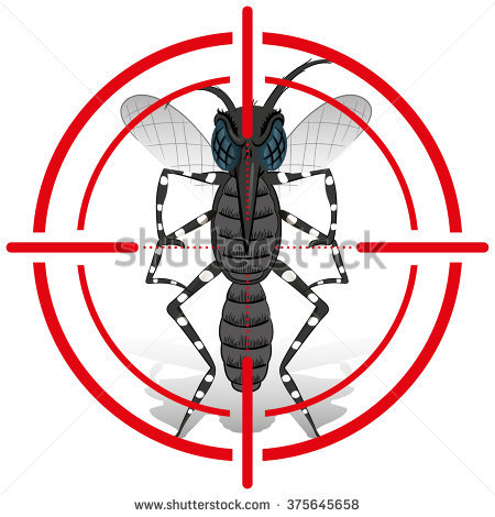 Aedes Stock Photos, Royalty.