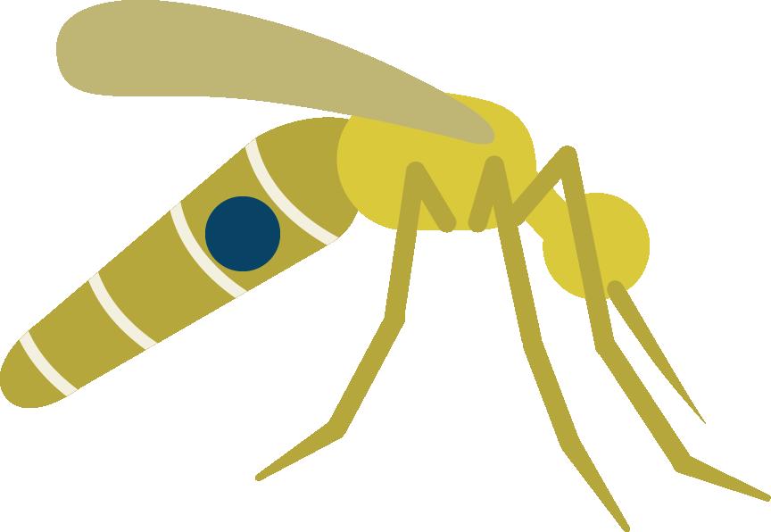 Mosquito clipart prevention disease, Mosquito prevention.