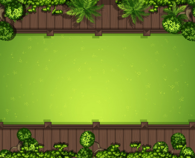 Aerial green grass background Vector.