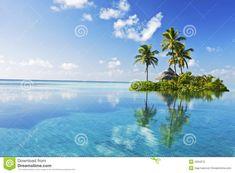 1394 Best Landscapes & Trees: Photos, Illustrations, Videos.