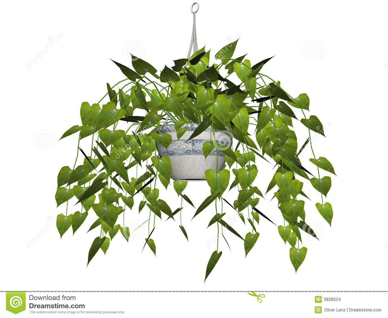 Aerial Plants Clipart.