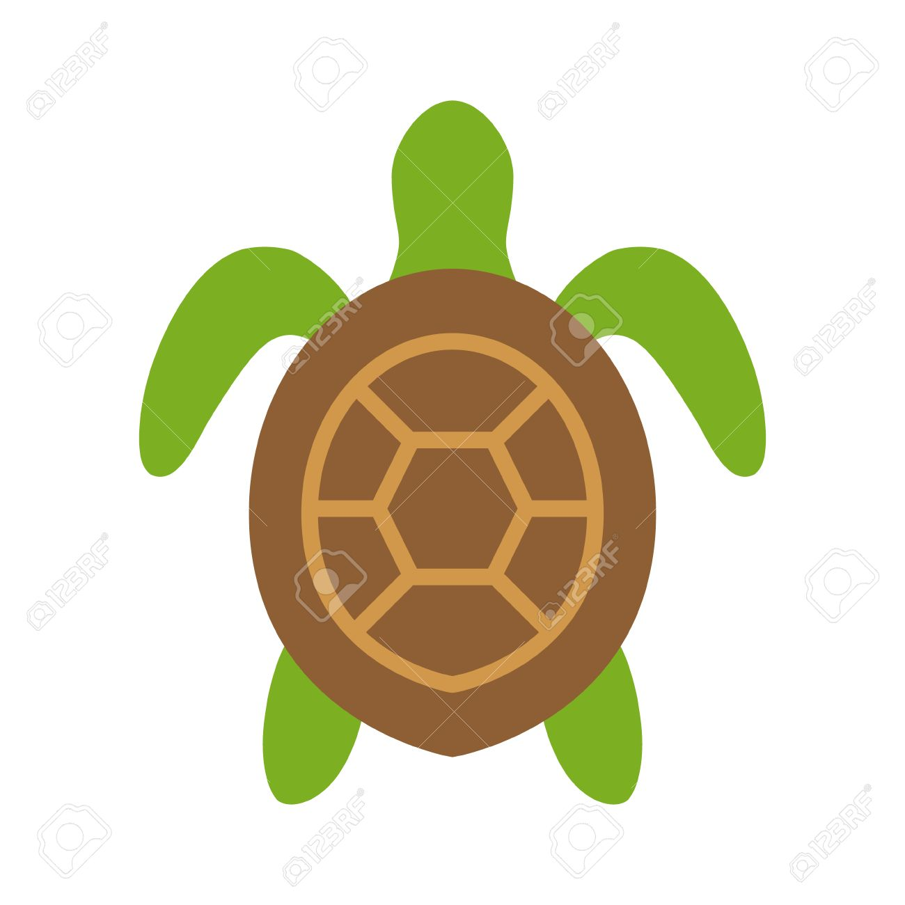 Turtle Top View Clipart.