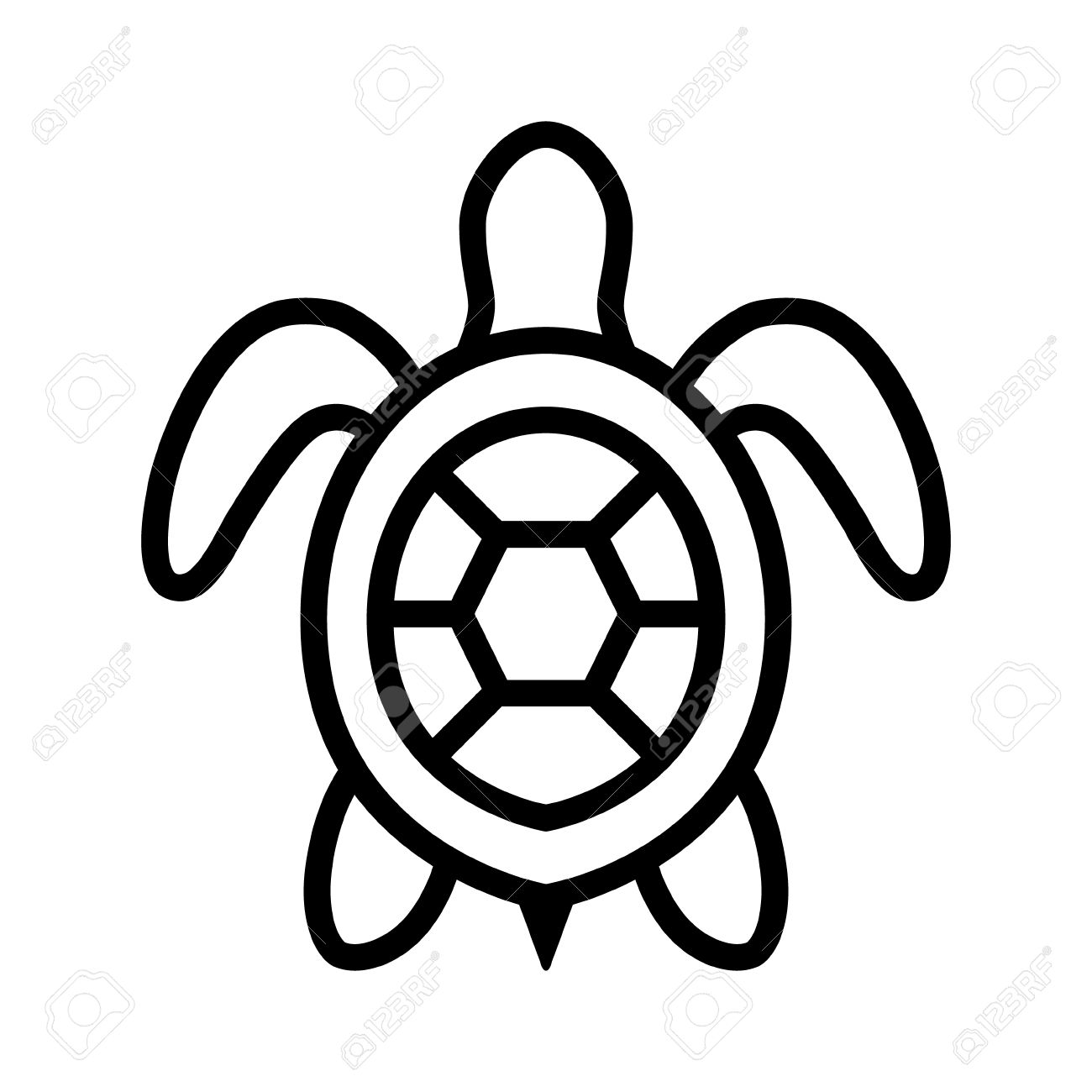 Turtle Clipart Top View.