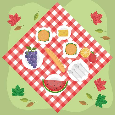 Aerial view of food on picnic blanket.