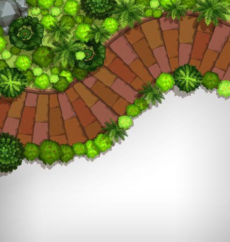 Aerial view of garden border.