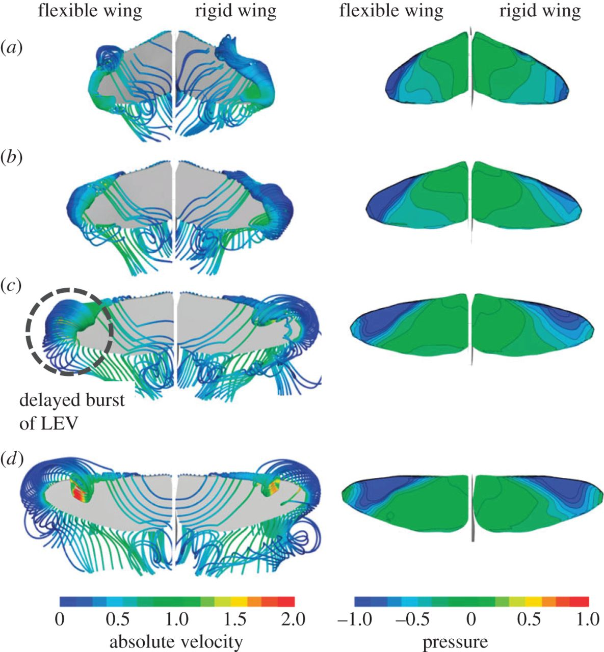 Aerodynamics, sensing and control of insect.