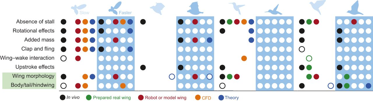 Flapping wing aerodynamics: from insects to vertebrates.
