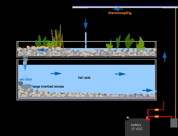 Hydroponics, Aquaponics And Aeroponics.