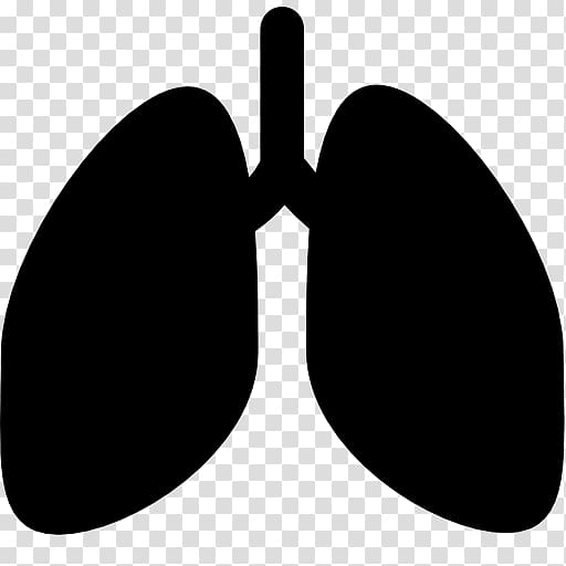 Lung Computer Icons, lungs transparent background PNG.