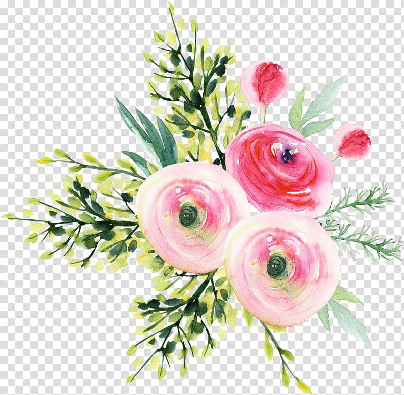 Pink ranunculus flowers , Garden roses Flower bouquet.