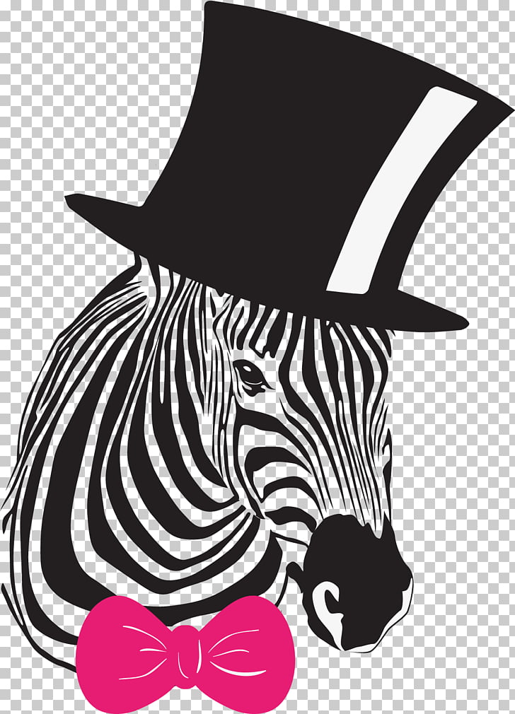 Zebra Wall decal Art , Cute zebra PNG clipart.