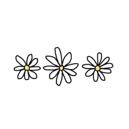flowers, overlay, and daisy image.