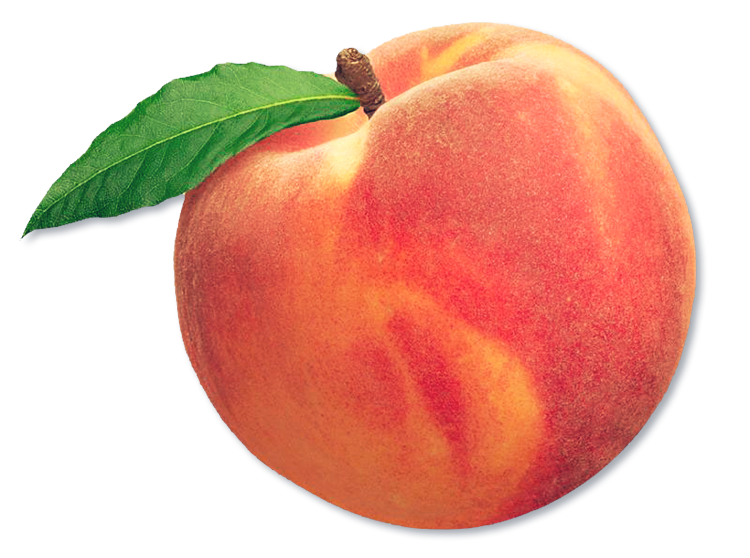 Peach clipart aesthetic, Picture #1851436 peach clipart.