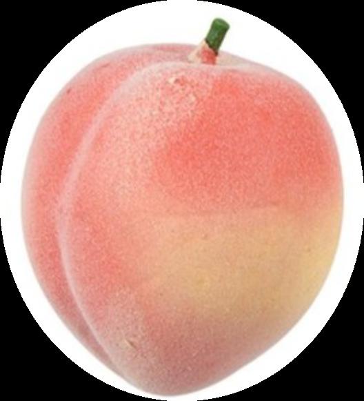 Peach Fruit Foam rubber Pink.