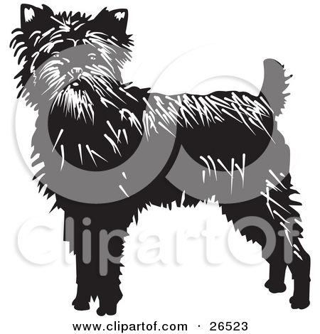 Clipart Illustration of an Alert Black Affenpinscher Dog In A Red.