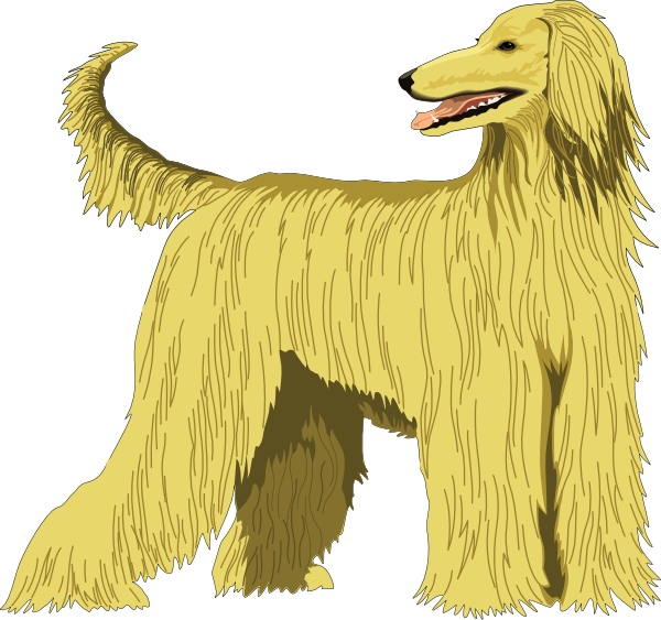 Afghan Hound Clip Art at Clker.com.