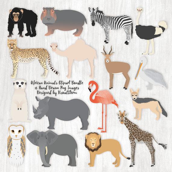 African Animals Clipart Bundle Safari Animal Clipart Africa.