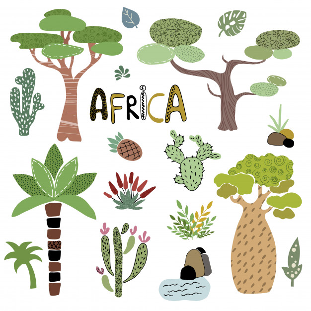 Vector set of african palm trees Vector.