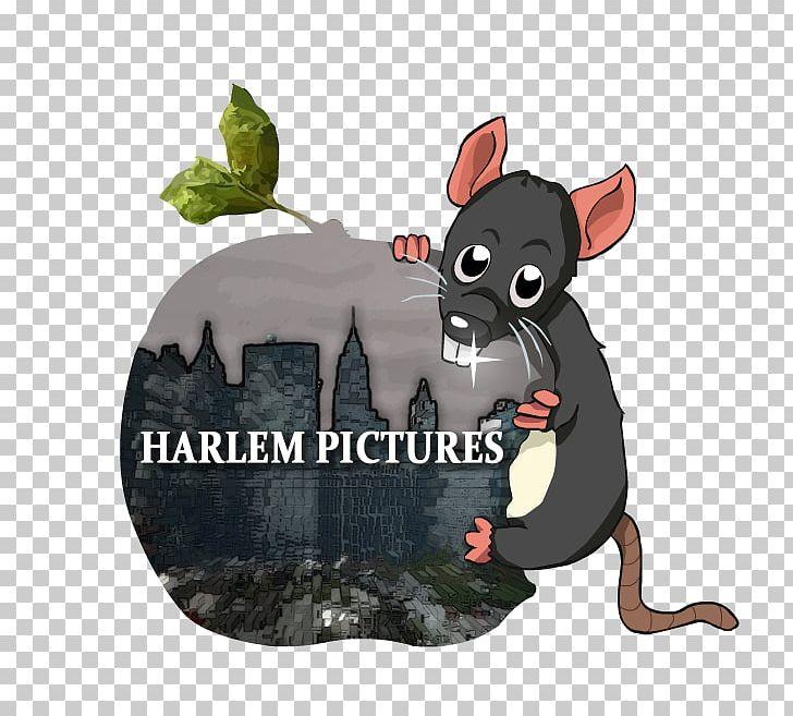 Harlem S Cinematographer Harlem Renaissance African.