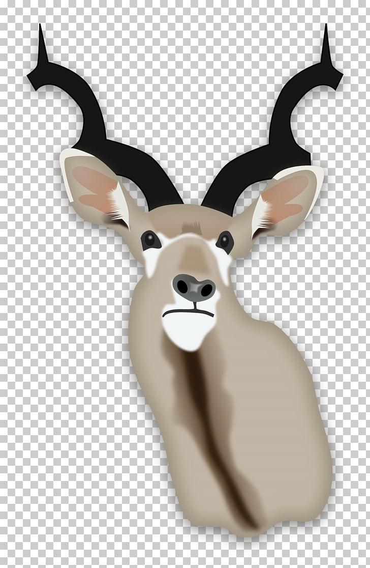 Africa Gazelle Antelope Deer Springbok, safari PNG clipart.