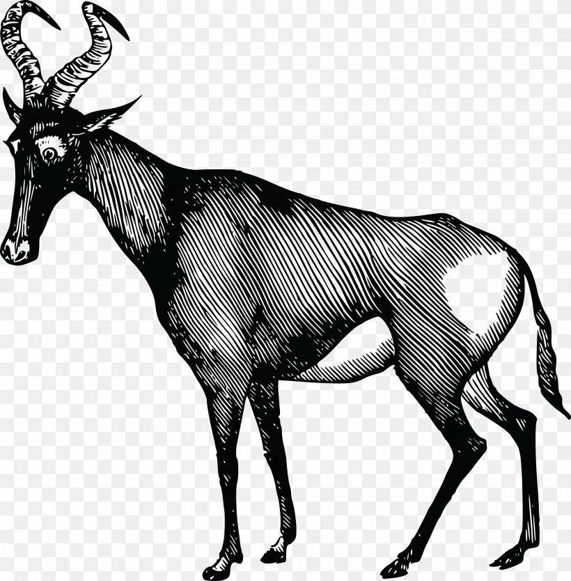 African Antelope Deer Clip Art, PNG, 4000x4071px, Antelope.