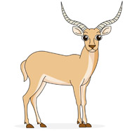 African antelopes clipart clipart images gallery for free.
