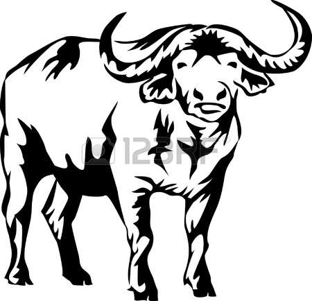 666 African Buffalo Stock Illustrations, Cliparts And Royalty Free.