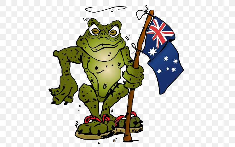 Cane Toads In Australia Clip Art Frog, PNG, 486x515px, Toad.