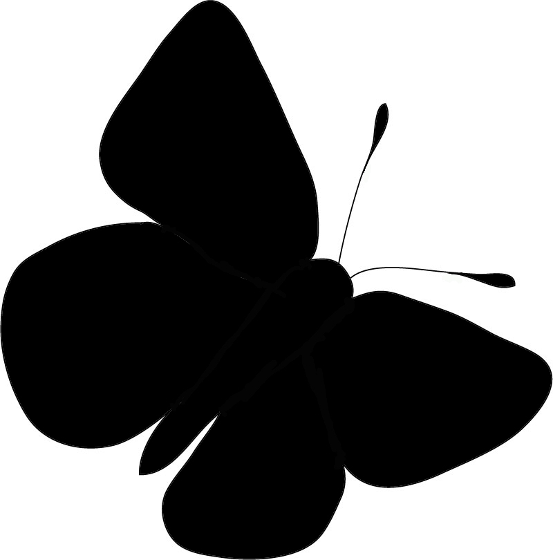 Free Butterfly Graphic, Download Free Clip Art, Free Clip.