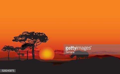 African landscape with animal silhouette. Savanna sunset.