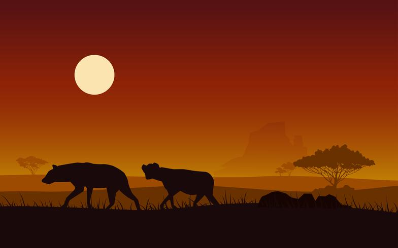 Silhouette hyena on a background sunset fo africa.