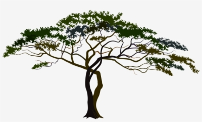 African Tree Png.