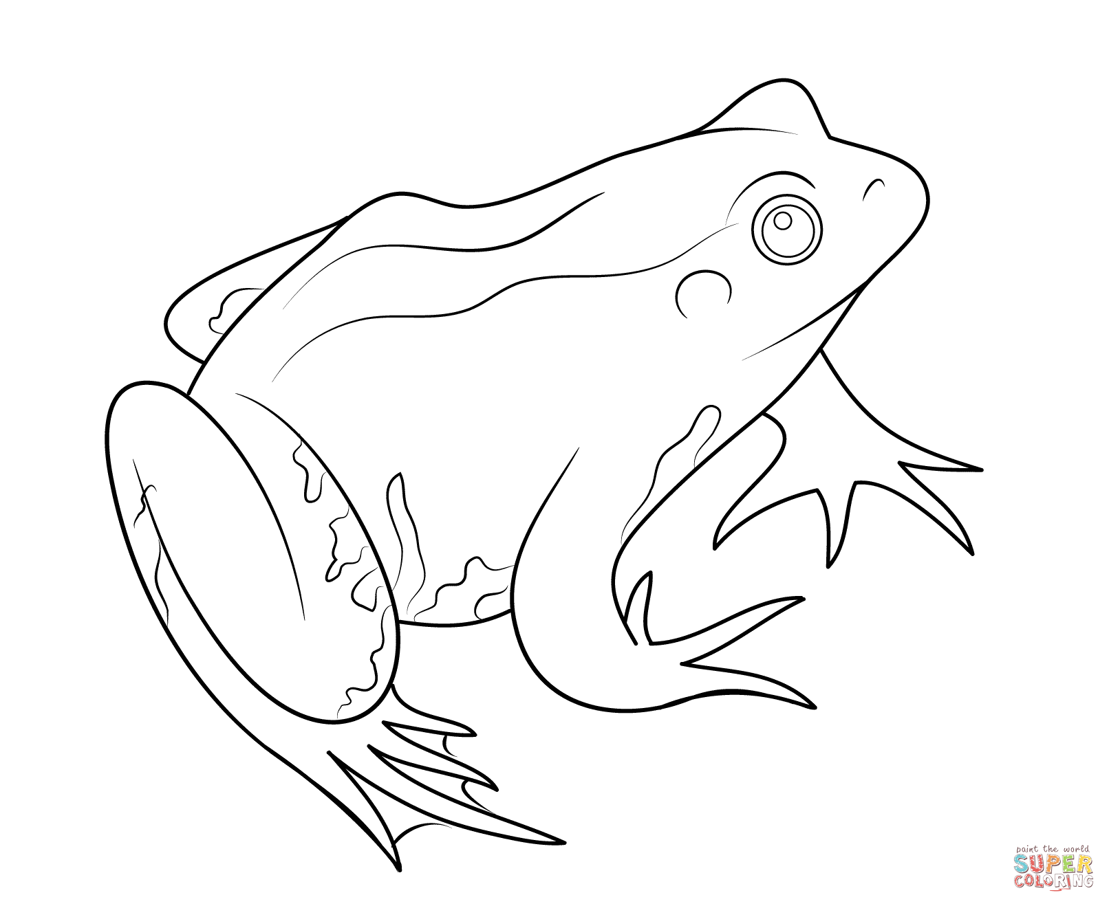 Frog coloring page.