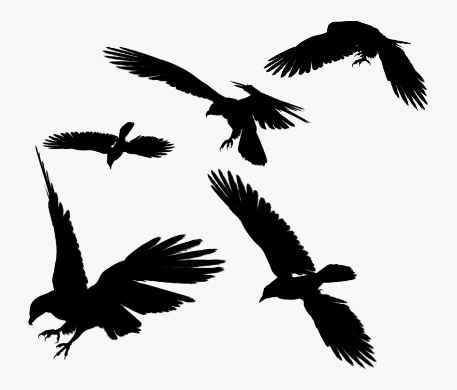 Black Eagle Clipart Benfica.