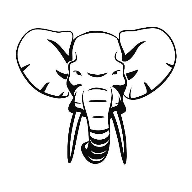 Elephant Ear Clipart.
