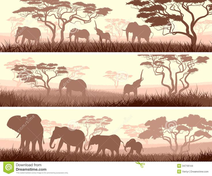 1000+ images about Design Patterns: Africa on Pinterest.