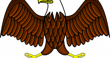 African Fish Eagle Vector Archives.