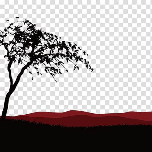 Silhouette of tree on grass field, Africa Temperate.