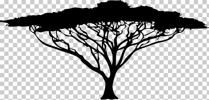 African Trees Wattles , african grasslands PNG clipart.