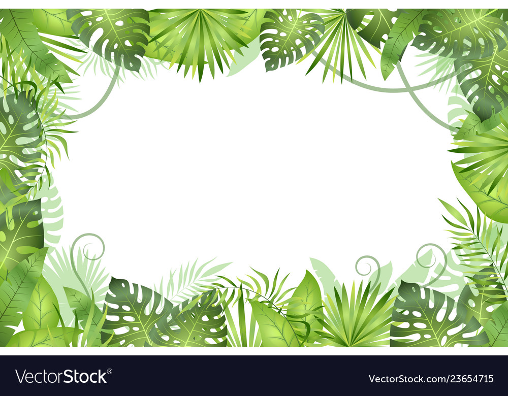 Jungle background tropical leaves frame.