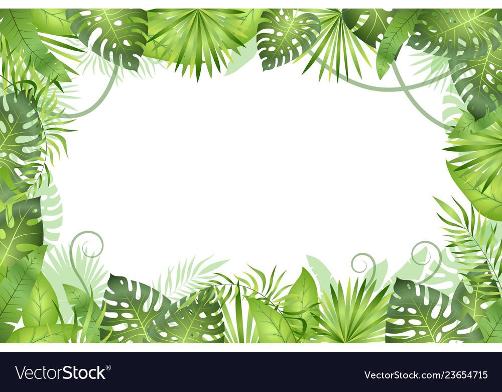 Jungle background tropical leaves frame.